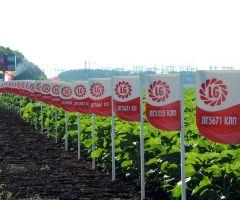 Βαθμολογία, περιγραφή και κριτικές του κατασκευαστή agrofirm Limagrain Groupe