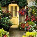 Vanka Wet virág ültetése, termesztése és gondozása otthon