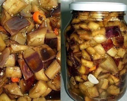 A padlizsán főzésének receptje, mint a téli gombák, lépésről lépésre nyalogatja az ujjait