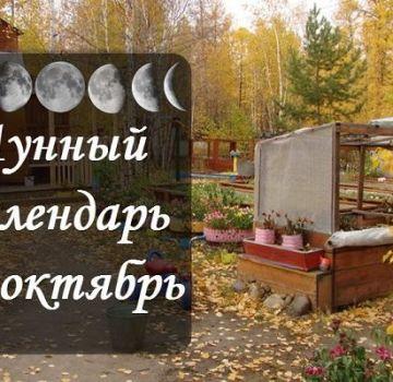 Calendarul semănat lunar al grădinarului și grădinarului, tabel de lucrări pentru octombrie 2020