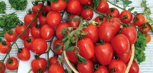 Caracteristicile și descrierea soiului de roșii căpșune, randamentul său