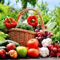 Calendrier lunaire de février 2020 pour le jardinier, jours propices à la plantation