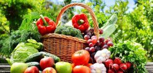 Lunárny kalendár na február 2020 pre záhradníka, priaznivé dni pre výsadbu