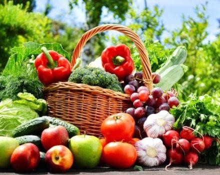 Calendario lunar de febrero de 2020 para el jardinero, días favorables para la siembra.