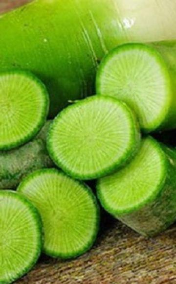 Nützliche Eigenschaften und Kontraindikationen von grünem Rettich für den menschlichen Körper
