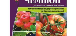 Instrucțiuni de utilizare a fungicidului Campion, mecanism de acțiune și rate de consum