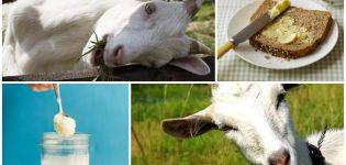 A kecsketejvaj előnyei és hátrányai, valamint az otthoni főzés módja