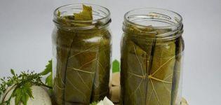 A TOP 3 recept a savanyított uborka számára a forrásvízben a téli időszakra