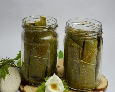 TOP 3 recepten voor ingelegde komkommers in bronwater voor de winter