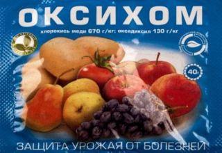 Az Oxyhom gombaölő szer használati útmutatója, a fogyasztás aránya és analógjai