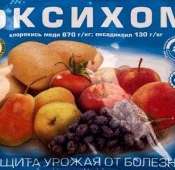 Instructies voor het gebruik van het fungicide Oxyhom, consumptiesnelheid en analogen