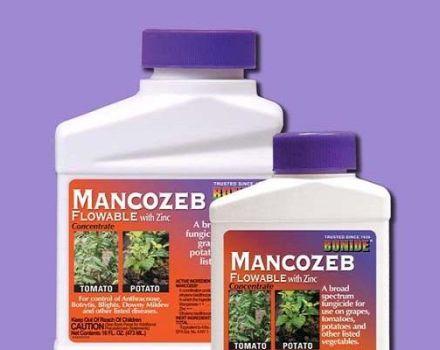 Mancozebin sienitautien käyttöohjeet, lääkkeen koostumus ja vaikutus