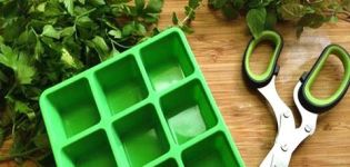 Najjednoduchšie možnosti, ako zmraziť petržlen na zimu v chladničke