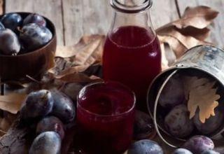 11 rețete simple pentru fabricarea compoturilor de prune pentru un borcan de 1-3 litri