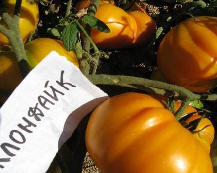 Descripción y características de la variedad de tomate Klondike