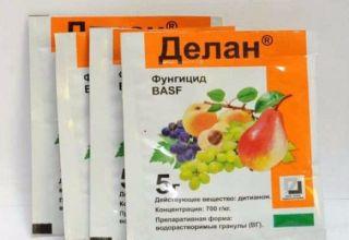 Instrucciones para el uso del fungicida Delan y preparación de la solución de trabajo.