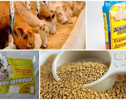 Composición química e instrucciones para el uso de levadura para piensos para ganado.