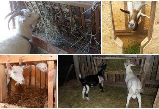 Tipuri de hrănitori de capre și cum se poate face singur, instrucțiuni și desene
