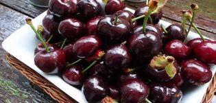 Descripción y características de la variedad de cereza Dyber, plantación y cuidados.