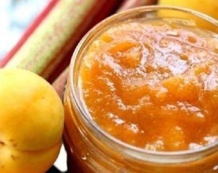 Las 3 mejores recetas de mermelada de albaricoque con fructosa para diabéticos para el invierno