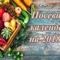 Recommandations aux jardiniers pour 2021 selon le calendrier lunaire des semis