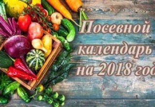 Preporuke za vrtlare za 2021. godinu prema kalendaru sjetve lune