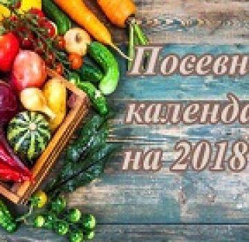 Recomandări pentru grădinari pentru anul 2021 în conformitate cu calendarul semănatului lunar