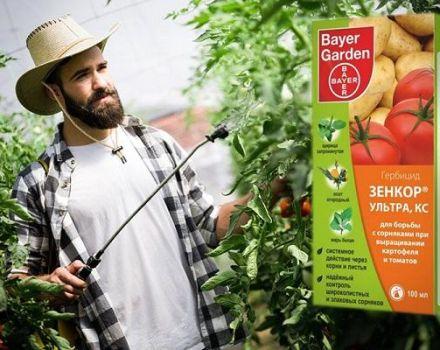 Instrucciones para el herbicida Zenkor y las reglas de uso del producto.