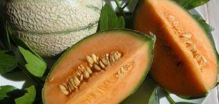 ¿Por qué los melones pueden tener pulpa anaranjada en su interior, qué tipo de variedades son?