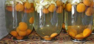 Una receta paso a paso para hacer compota de manzana y albaricoque para el invierno.
