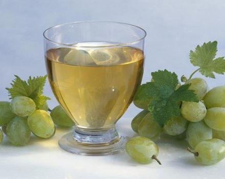 Miért válhat a bor ecetté, hogyan lehet azonosítani és rögzíteni?