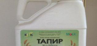 A Tapir herbicid felhasználási útmutatója, a hatásmechanizmus és a fogyasztás mértéke