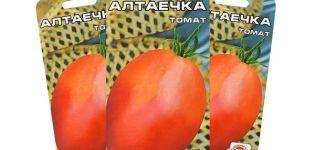 Descrierea soiului de roșii Altayechka și caracteristicile sale