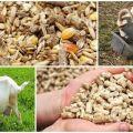 La mejor forma de alimentar a una cabra preñada y la dieta del animal antes y después del parto.