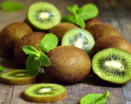 Los beneficios y daños del kiwi para la salud humana y cuándo es mejor comer la fruta, recetas de cosmetología