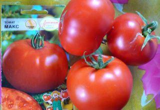 Características y descripción de la variedad de tomate Max, su rendimiento.