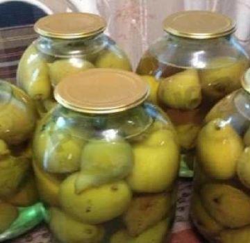 TOP 10 recetas de compota de pera con y sin ácido cítrico para el invierno, con y sin esterilización