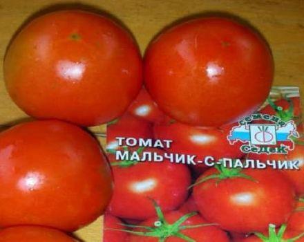 Descripción de la variedad de tomate Niño con un dedo, características de cultivo y cuidado.