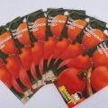 Descripción y características de la variedad de tomate Salado milagro, su rendimiento.