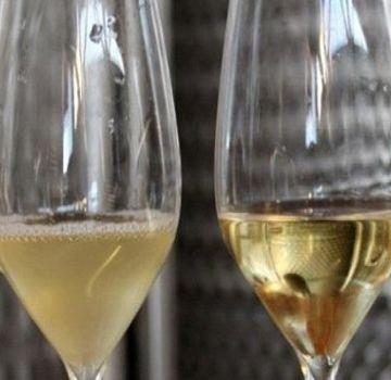 Hoe thuis wijn met gelatine te klaren, regels en verhoudingen