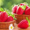 Descrierea și caracteristicile soiului Eliane de căpșuni, cultivare și îngrijire