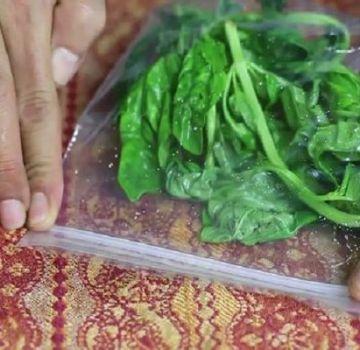 ¿Cómo puede guardar albahaca fresca en el refrigerador para el invierno en casa?