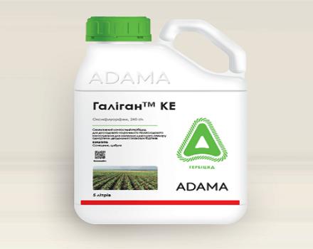 Instrucciones de uso del herbicida Galigan, mecanismo de acción y tasas de consumo