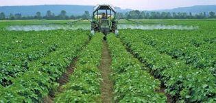 Descrierea celor mai bune fungicide pentru cartofi și norme de aplicare