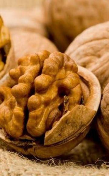 Λόγοι και τι να κάνετε εάν οι σκώροι ξεκινούν με καρύδια