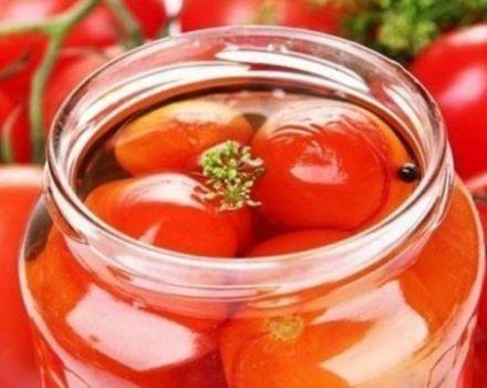 Die besten Schritt-für-Schritt-Rezepte für königlich eingelegte Tomaten für den Winter zu Hause