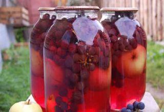 O rețetă simplă pentru compot de mere și struguri pentru iarnă