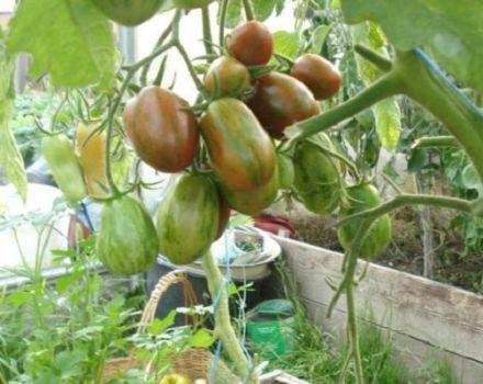 Descrierea soiului de tomate Superexotic, caracteristicile și productivitatea acestuia