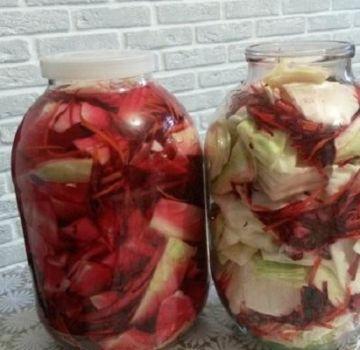 7 legjobb savanyú káposzta recept céklaval
