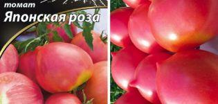 Opis odrody paradajky japonskej ruže a jej vlastnosti